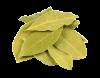Лист лавровый